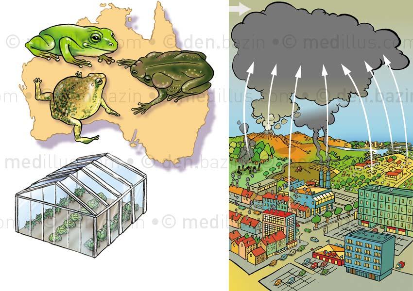 Pollutions environnementales