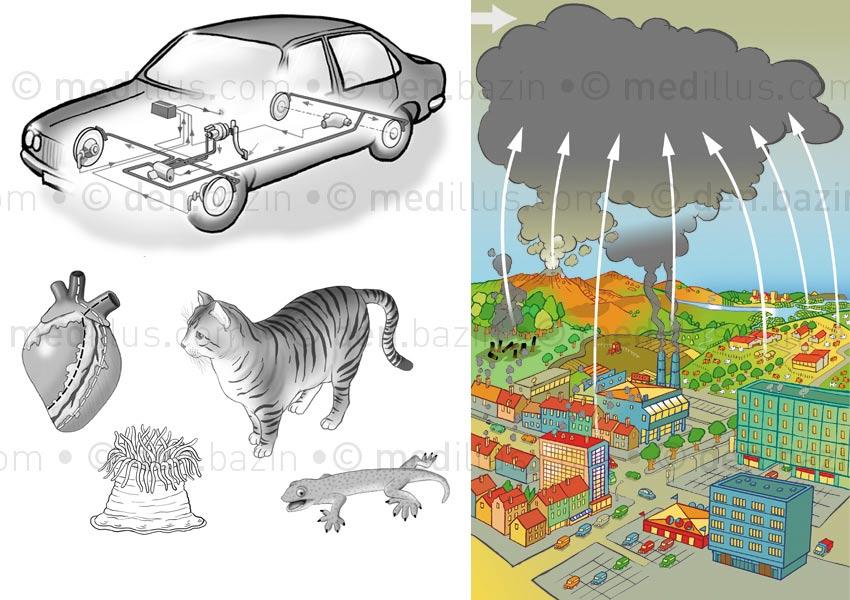 Pollution et autres dessins annexes