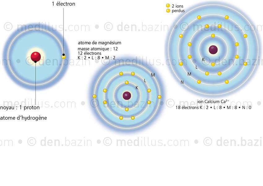 Atomes d'hydrogène, de magnésium, ion calcium