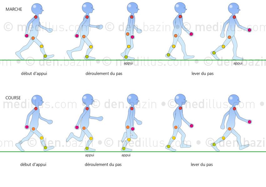 Décomposition des mouvements